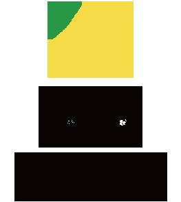 愛知県豊根村[とみやま村]ゆず収穫隊|とみやまの柚子収穫
