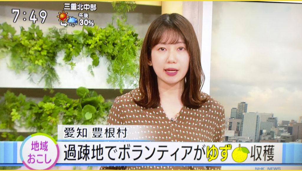 NHK総合|おはよう日本・東海で紹介頂きました|愛知県豊根村[とみやま村]ゆず収穫隊|とみやまの柚子収穫