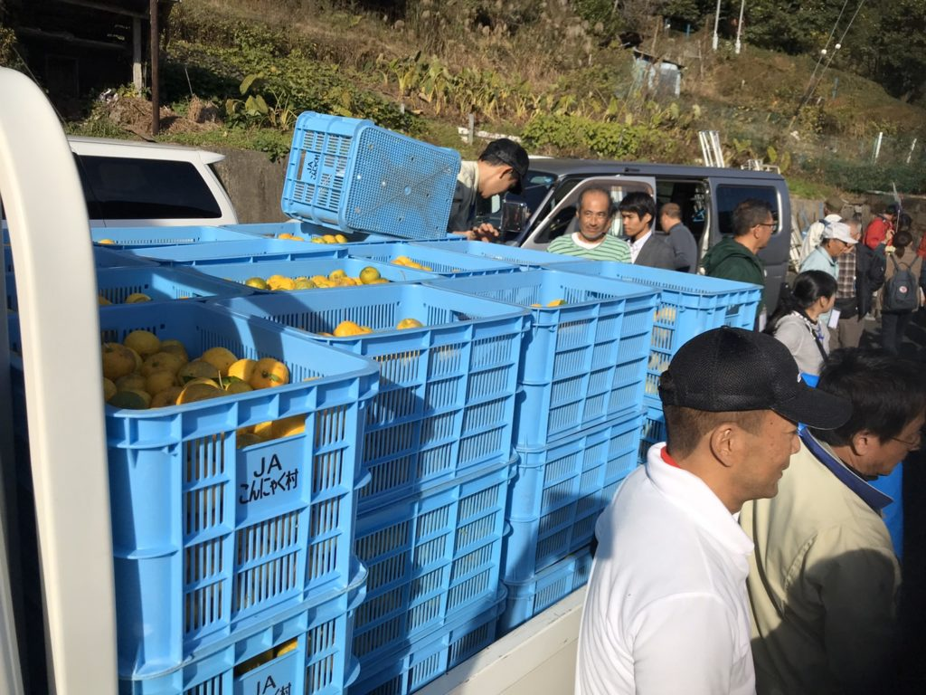結果報告|愛知県豊根村[とみやま村]ゆず収穫隊|とみやまの柚子収穫